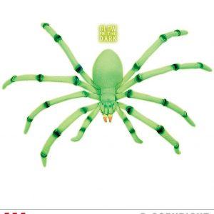 Araignee geante phosphorescente