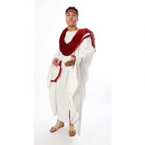 Sénateur romain