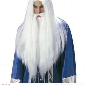 Perruque et barbe longue blanche