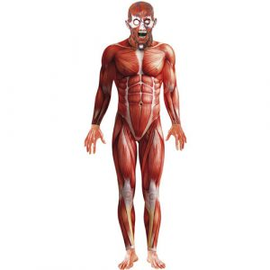 Costume homme seconde peau anatomie