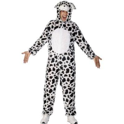 Costume homme dalmatien