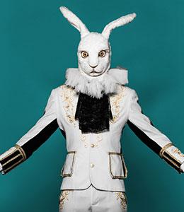 Thème Animaux Mascottes deguisements, accessoires _ Thèmes - Magasin déguisement Paris et produits de fête - Location de costumes