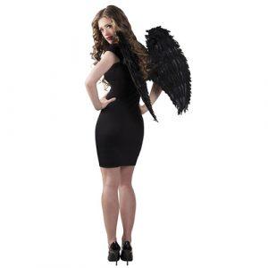 Ailes plumes noires