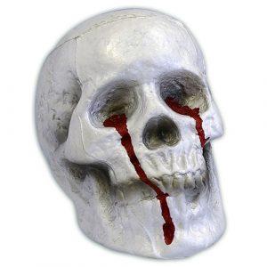 Crâne sanglant polystyrène 16x19 cm
