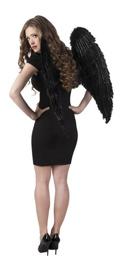 ailes-d-ange-noir
