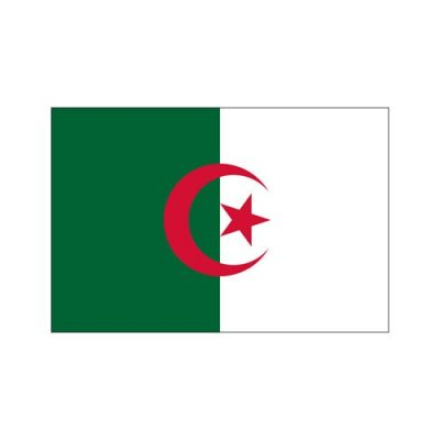 drapeau-algerie-90-x-150-cm